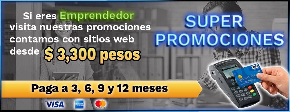 Paginas Web Económicas en Monterrey